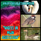"""Sokkenclub 2020 abonnement """"vogels in mijn achtertuin""""_"""
